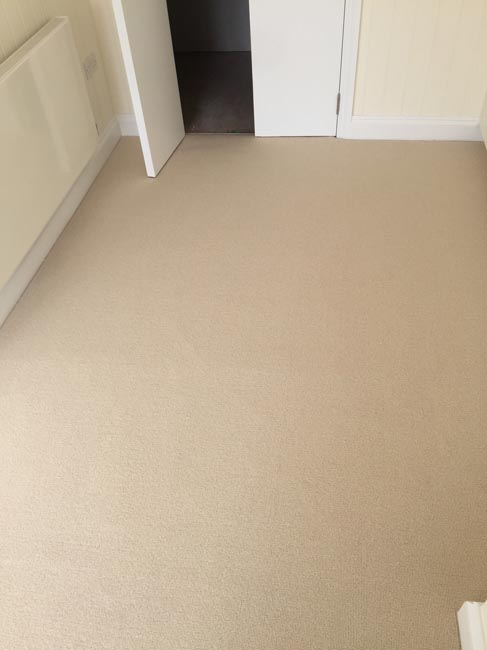 portfolio carpets beige carpet 270616 10