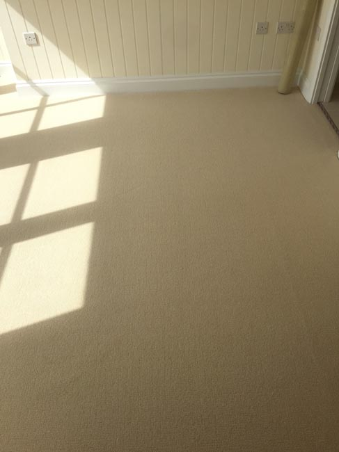portfolio carpets beige carpet 270616 11