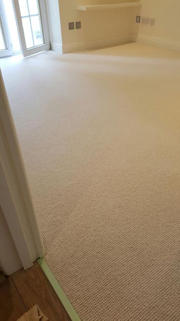 portfolio carpets beige rooms and stairs carpet 02