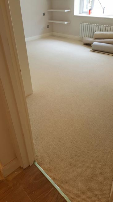 portfolio carpets beige rooms and stairs carpet 04