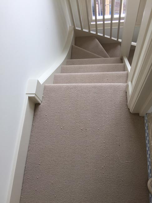 portfolio carpets grey carpet 270616 04