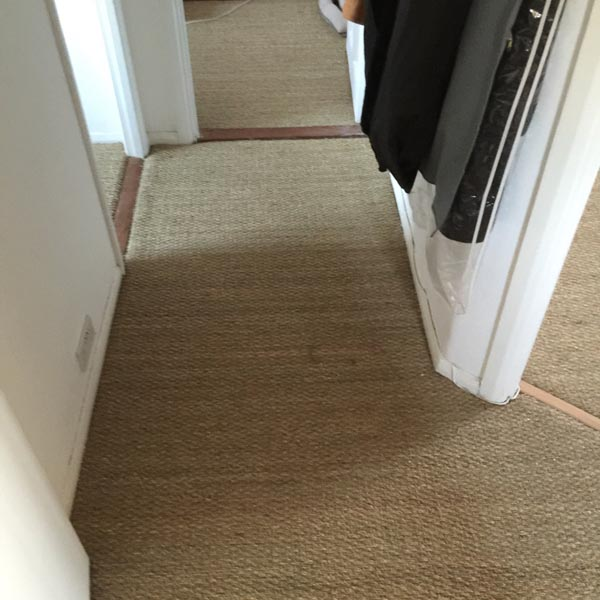 portfolio carpets sisal installed on flat areas 05