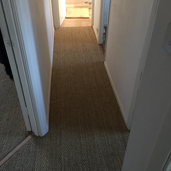 portfolio carpets sisal installed on flat areas 08