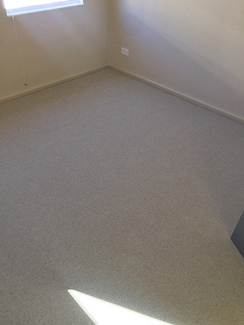 Carpet-in-Room-01