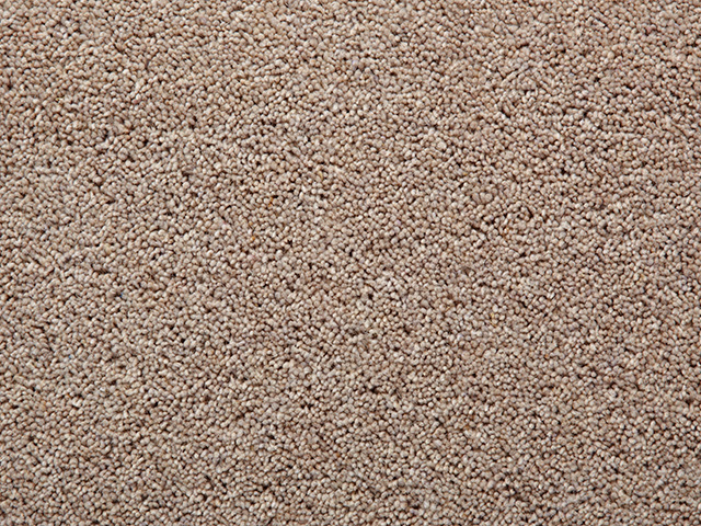Wool Mix Twist Piles Chancellor The Flooring Group