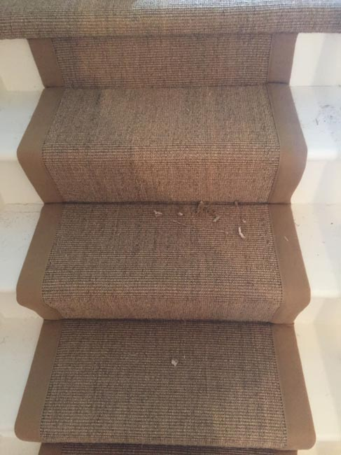 portfolio-carpets-brown-carpet-border-stairs-02