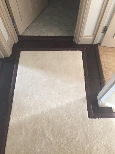 portfolio carpets white stairs black broder runner 12