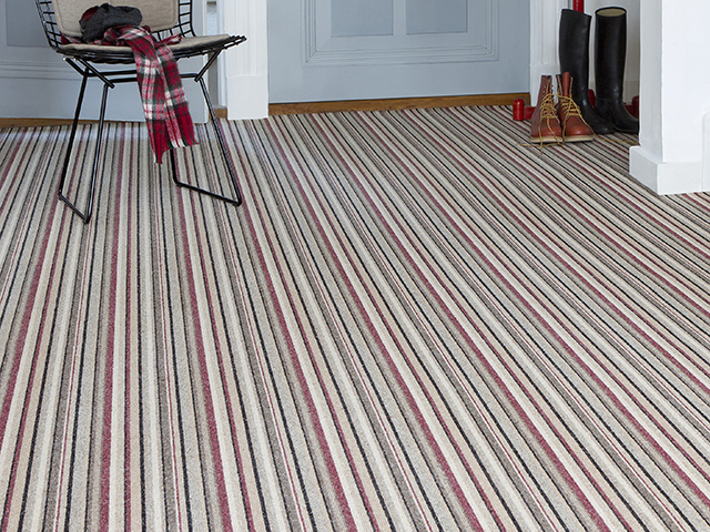 Edel Telenzo Carpets – Piccadilly 155