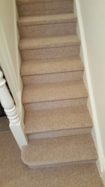 portfolio-carpets-plain-stair-carpet-02