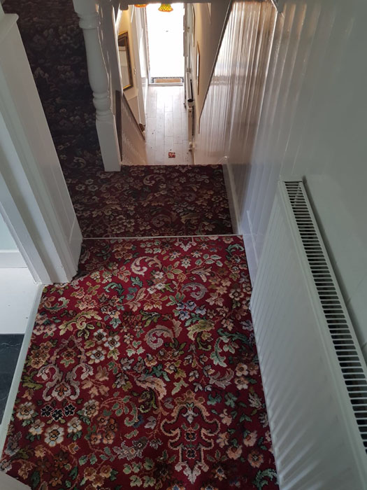 portfolio patterned red stair carpet 04