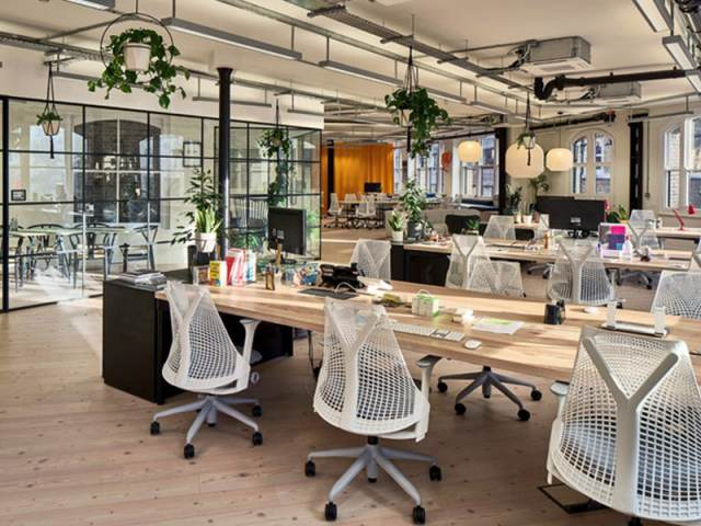 Karelia Wood Ash Flooring In Central London Office