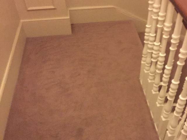 Lano`s Zen Carpet Fitted In Kings Cross Property