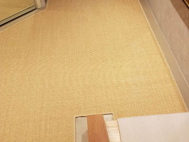 Sisal Carpet Fitted In Canada Water
