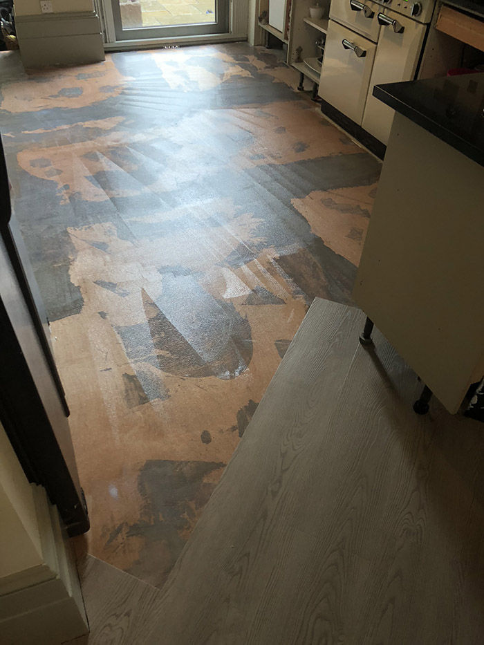 portfolio Amtico Spacia Honey Oak In Balham (1)