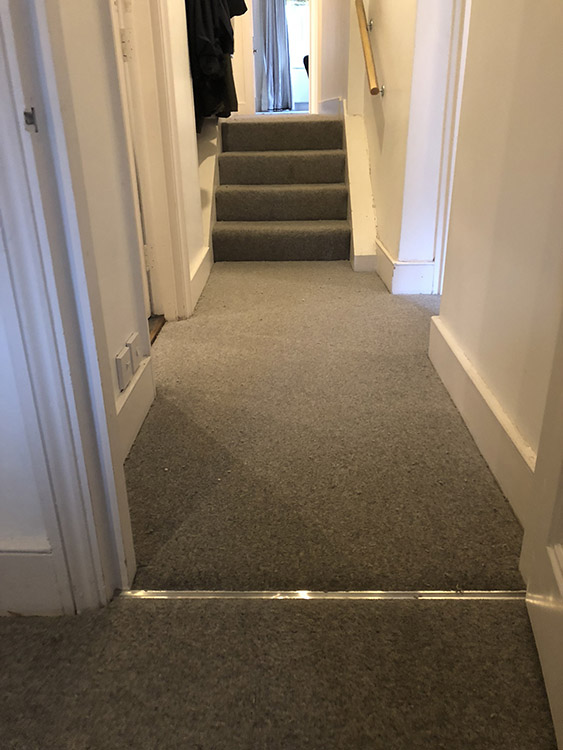 portfolio carpets westex-carpets-ultima-twist-major-bayswater (2)