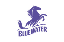 Clients We Work With - bluewater