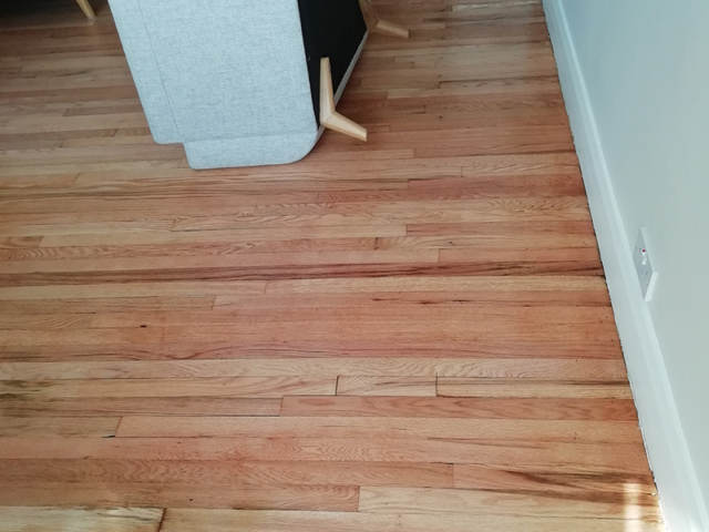 Sanding and Sealing of a Straight Plank Floorcovering in Clapham