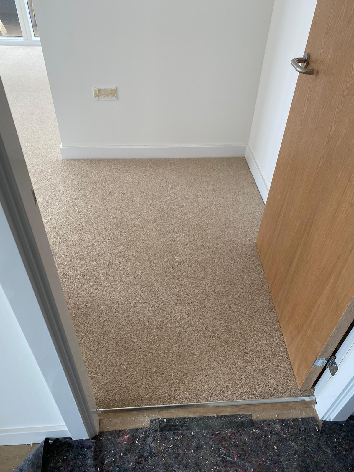 Clarendon Carpets Grosvenor Flawless Carpet 4