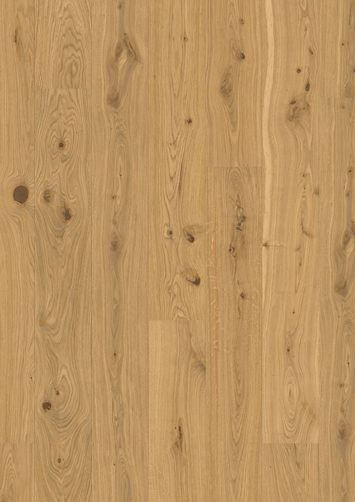 Oak Authentic_plank 181