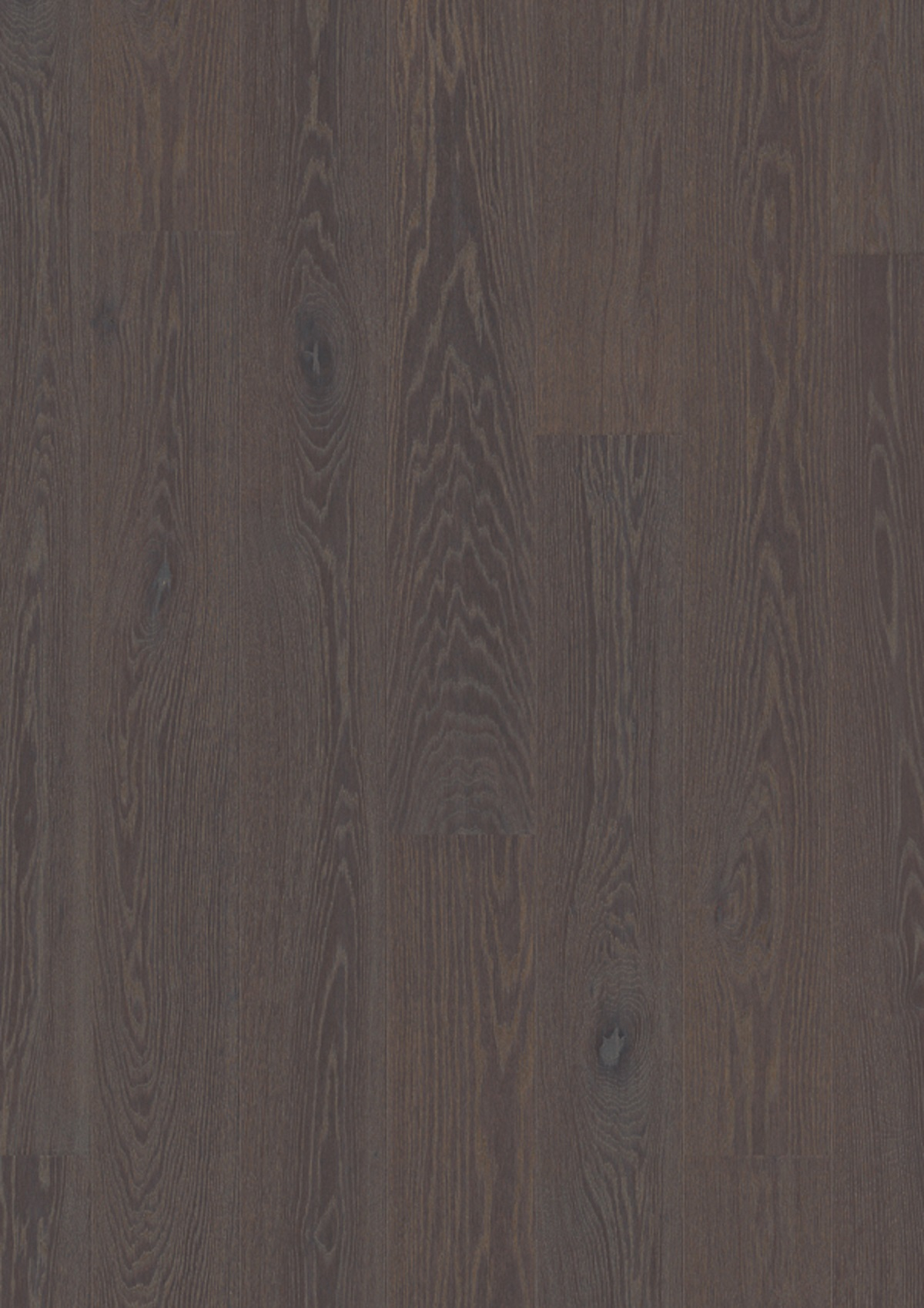Oak Foggy Brown_plank 181_Live Pure