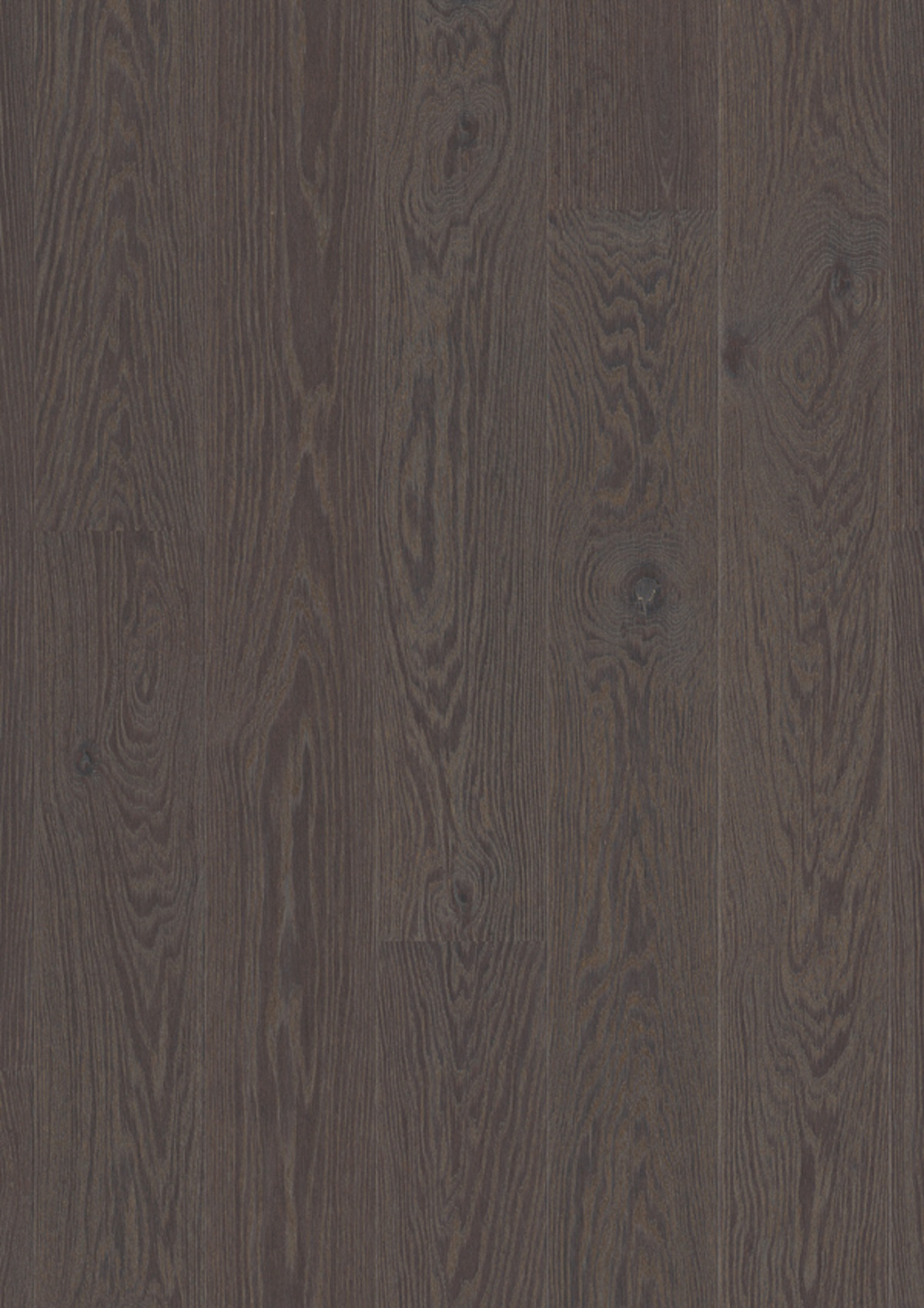 Oak Foggy Brown_plank Castle_Live Pure