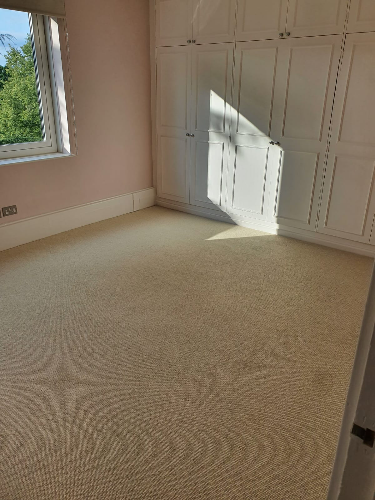 Beige Carpet in Barnes 1