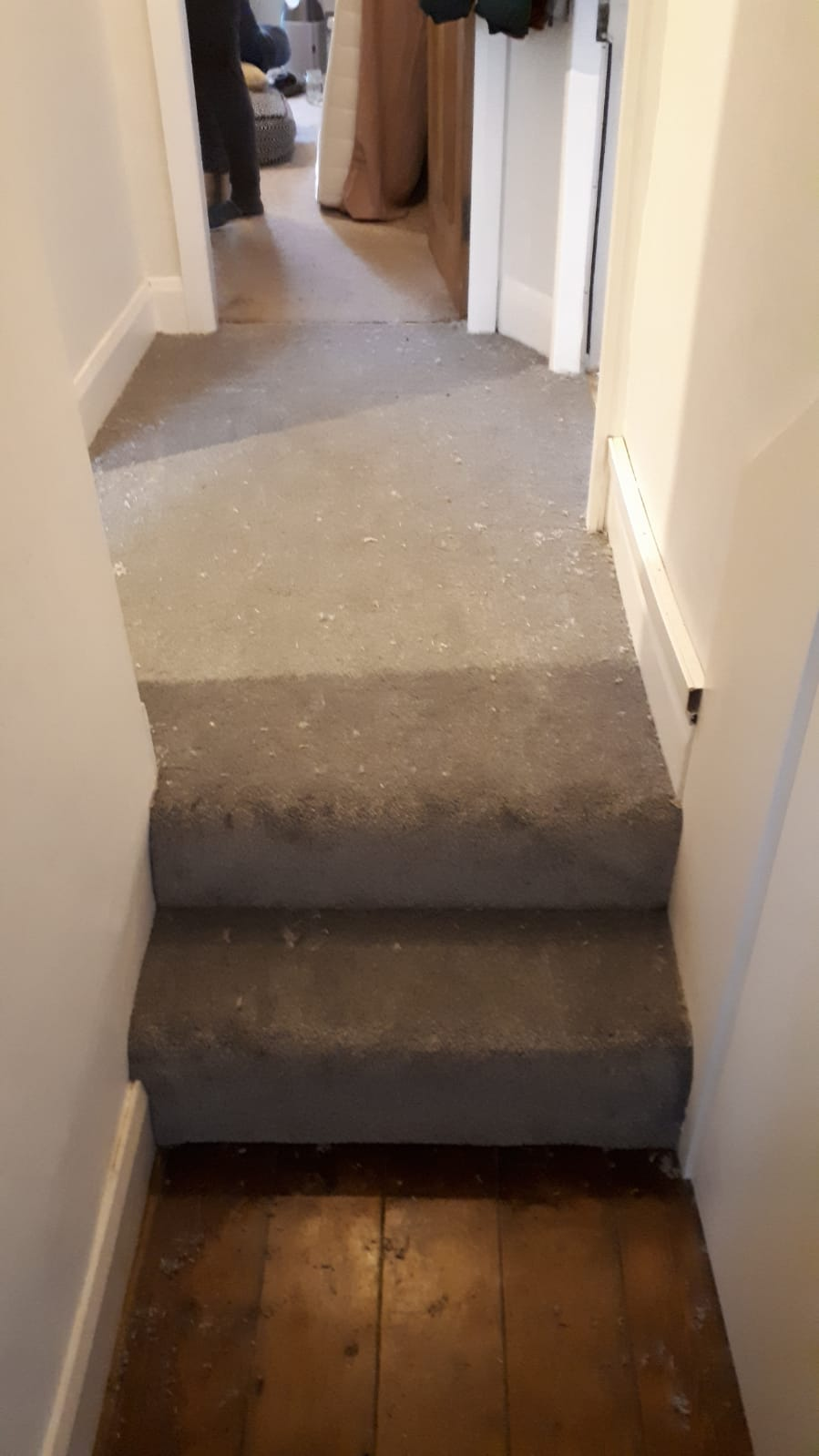 Cavalier Carpets Stainless Milton in Hammersmith 1