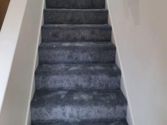 Condor Carpets Oxford 277 Carpet
