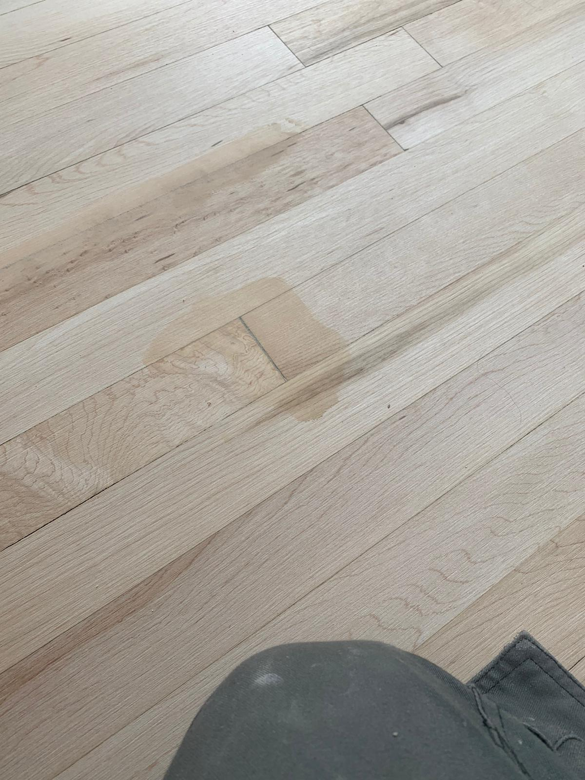 Sanding and Sealing Works 4