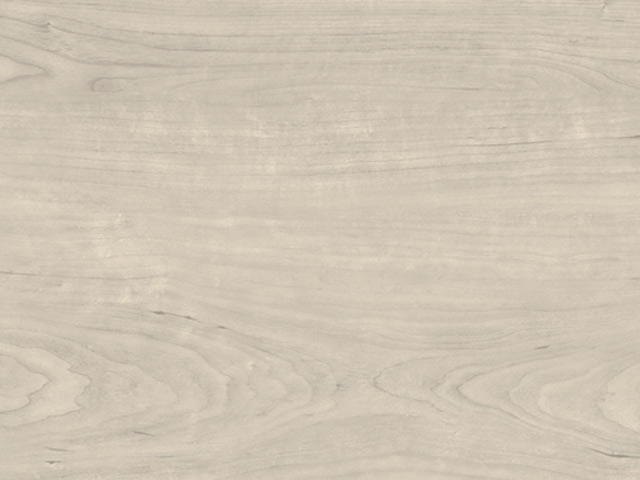 Cavalio - PROJECTLINE - 2911 Bleached Maple
