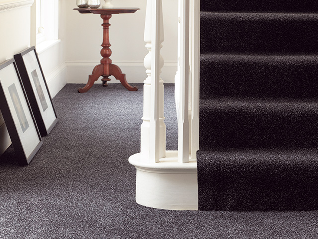 Abingdon Flooring – Stainfree Spicy
