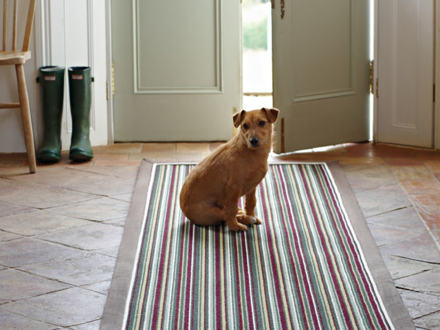 Alternative Flooring WildThing runner