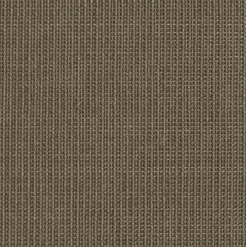 CY306 City Taupe