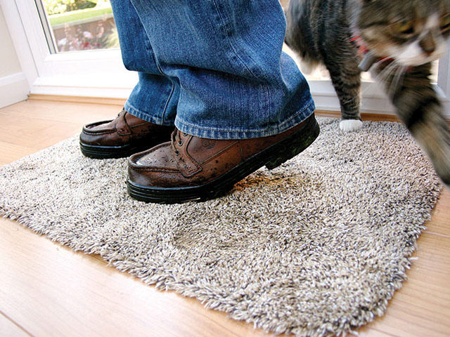 Coba Flooring - Entrance Mats - Dirt Trapper