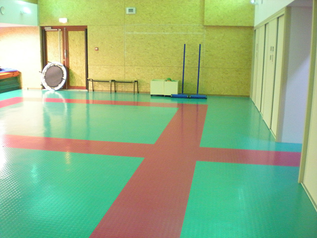Dalsouple Rubber – Gym