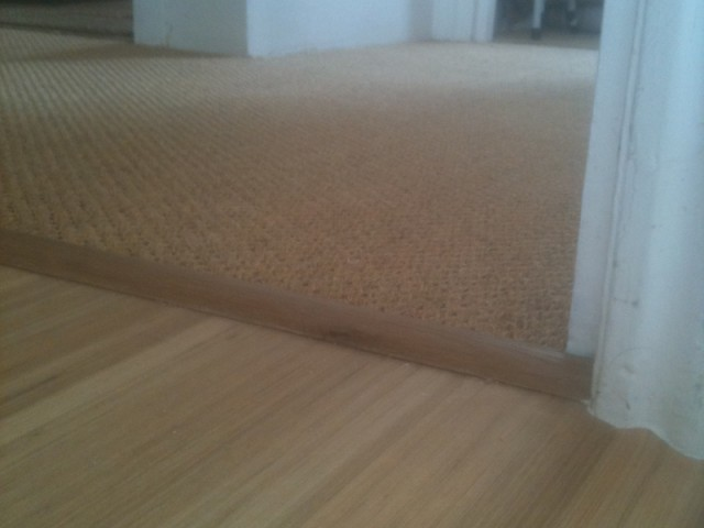 carpet and wood living areas