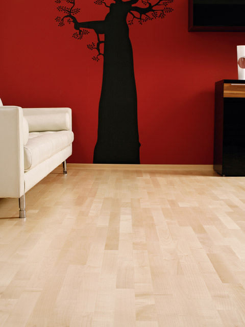 P81. Windsor European Maple Classic Lacquered 3 Strip