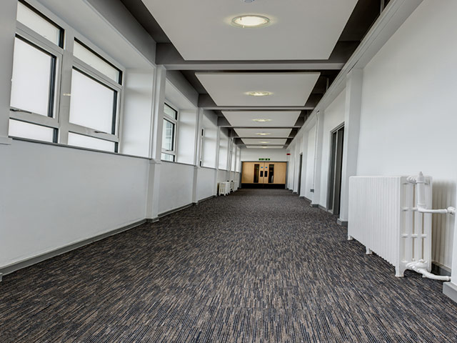 Paragon Flooring - Workspace Linear