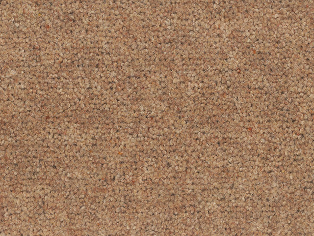 Regency Carpets - Broughton Twist