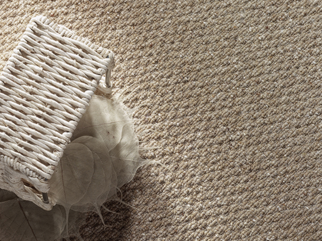Cavalier Carpets – Shepherds Collection
