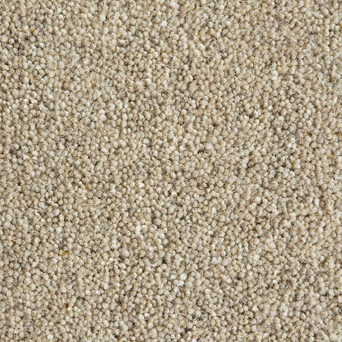 Taupe-SH4006
