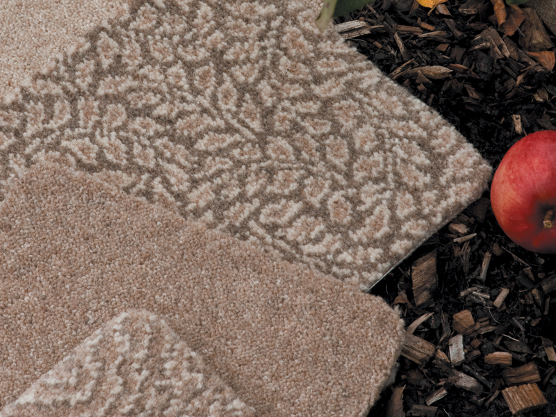 Ulster Carpets - Natural Choice - Cove, Fawn, Plover, Rowan, Fawn and Eider