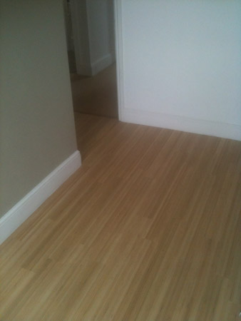 carpet and wood living areas 1