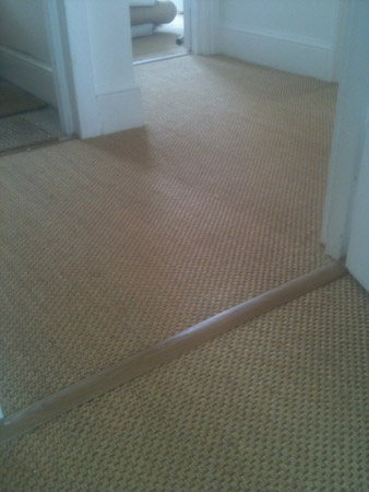 carpet and wood living areas 2