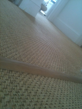 carpet and wood living areas 3