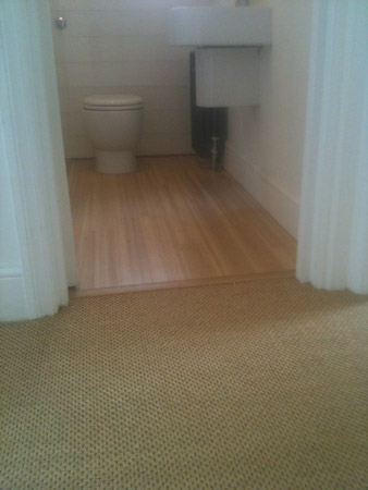 carpet and wood living areas 4