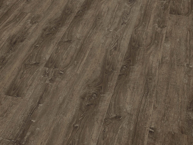 Cavalio - Projectline - 2967 Limed Oak Brown