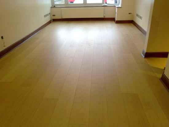 Amtico floor areas, living room, stairs and hall