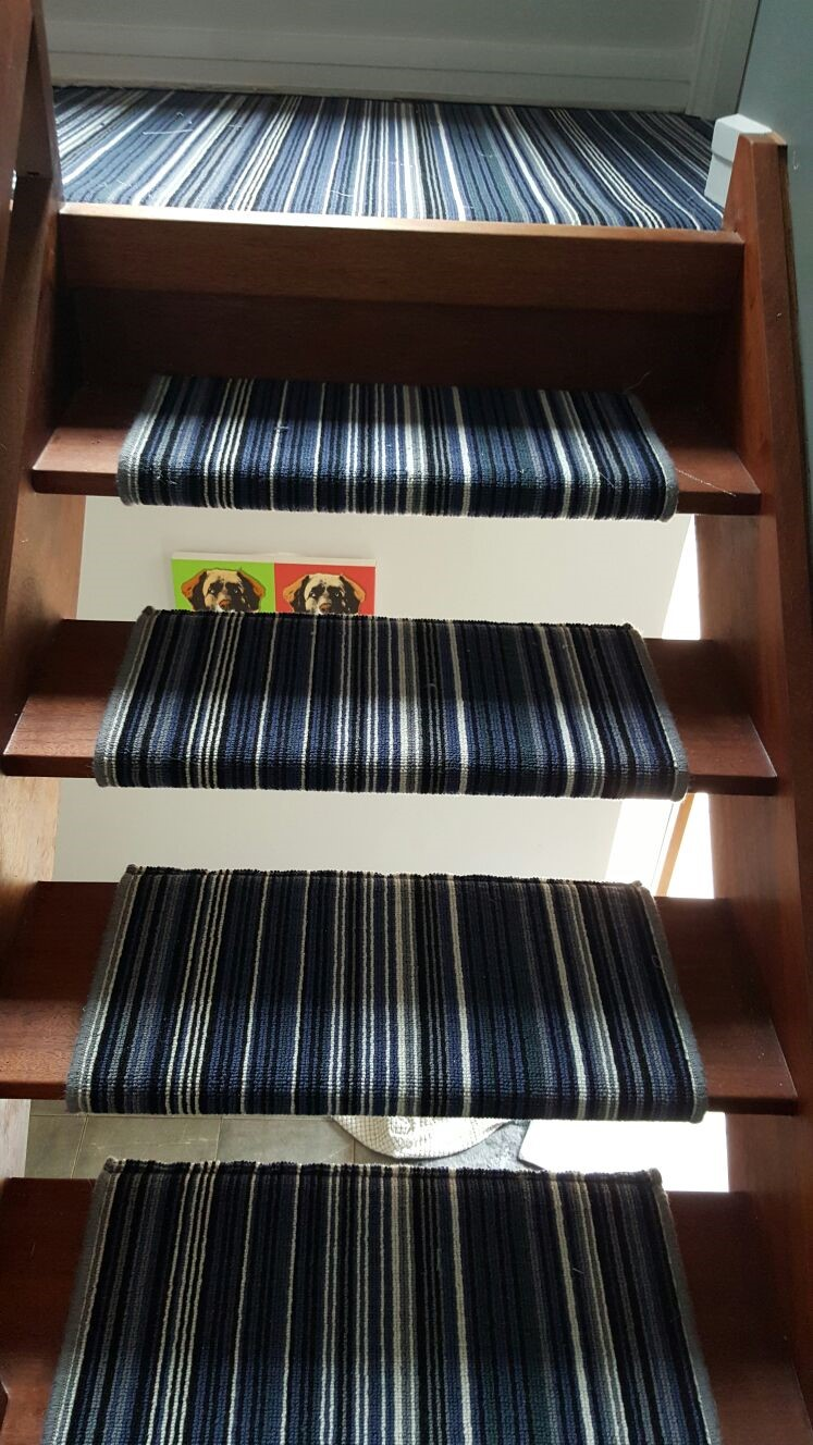 STRIPEY BLUE CARPET portfolio stairs 03
