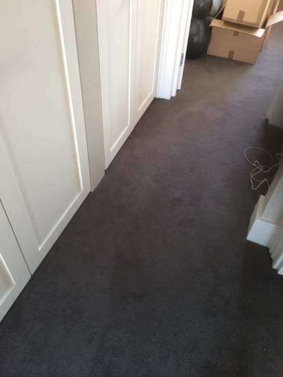 portfolio carpets areas stairs landing rooms 02
